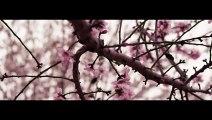 ADDA - Nu Plange Ana - Videoclip Oficial