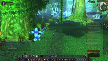 WoW: Rogue Gameplay #37 - World of Warcraft 2015 [World Of Warcraft 6.0.3] 2015 HD