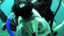 See what happens when you crack an egg underwater