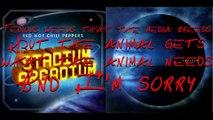Red Hot Chili Peppers - Stadium Arcadium with lyrics