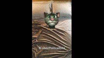 Sardi ohh gae ahh | PoliticalBilla