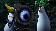 Penguins of Madagascar Movie CLIP - Slap Dance (2014) - Animated Movie HD