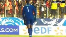 Dabo Goal Lens vs Lyon 0 - 3 Coupe de France 4-1-2015