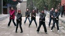 Wing Chun Sil Lim Tao At Shaolin Temple China