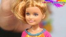Destination Safari Stacie Doll / Stacie na Safari - Barbie Sisters / Siostry Barbie - BGV58 - Recenzja