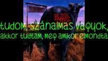 blink-182 -Pathetic/Szánalmas magyar felirattal