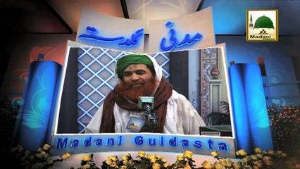 Madani Guldasta 205 - Noor Walay Mustafa - Maulana Ilyas Qadri