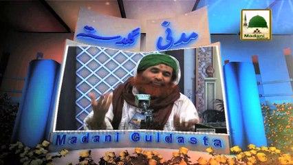 Madani Guldasta 01 - Ik Jhalak Dekhnay Ki Taab Nahi Do Aalam Ko - Maulana Ilyas Qadri