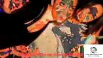 Dre Davide Van De Sfroos Deep Purple Craig David Drake Ani DiFranco Doors Hilary Duff
