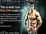 Supplements To Build Lean Muscle Adonis Golden Ratio System Review