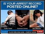 Criminal Records Background Checks   Everify Background And Criminal Record Review Guide