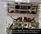 Vertical Automatic Milk Powder Packing machine,Flour, Corn Powder Vertical Packing Machine with Screw Dispenser and Auguer Filler