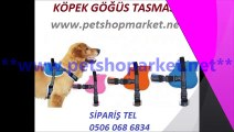 Köpek tasması,köpek tasması fiyatları,köpek tasması fiyatı,köpek tasmaları,köpek tasmaları fiyatları,köpek tasmaları fiyatı