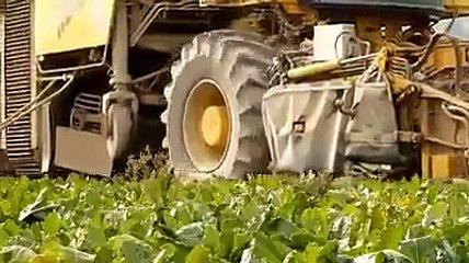 Haulm topper farming simulator
