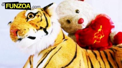 Mimi Teddy Ki Shero-Shayari- Episode 01/ Lamba Chauda Sher/ Funzoa