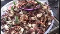 Khmer food ▶ Cambodian food ▶ Street food in Cambodia ▶ Khmer food cooking show 2014