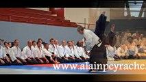 Stage d'Aïkido traditionnel à Dax avec Alain PEYRACHE