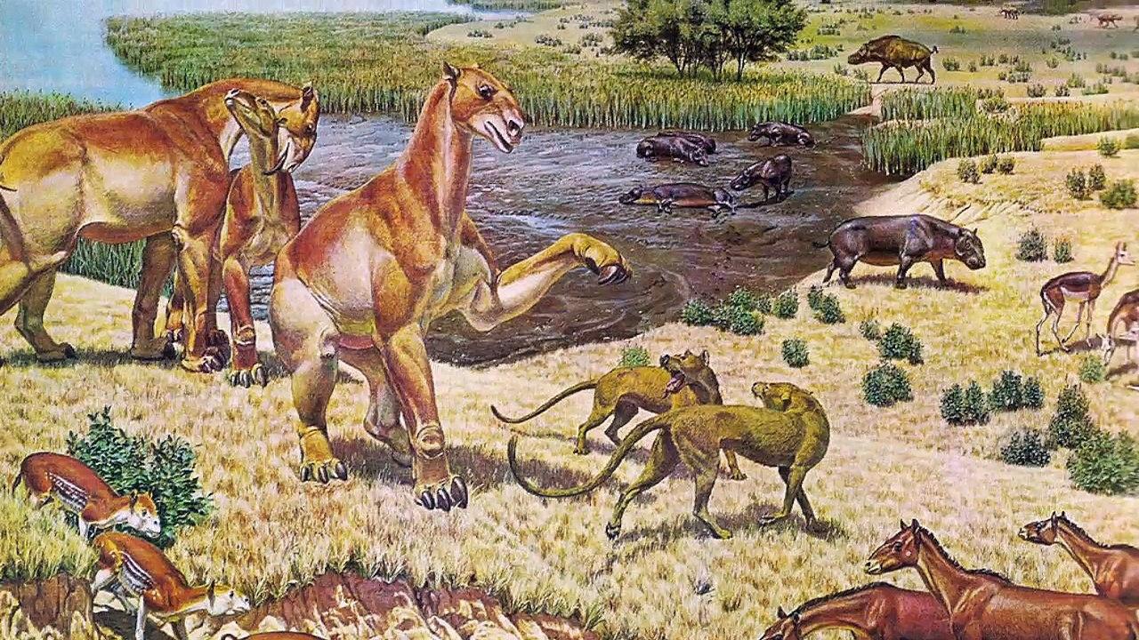 кайнозойская эра животные и растения фото тюменского
