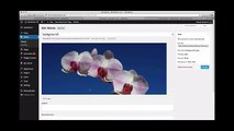Using the WordPress Media Library - What is Media Library in Wordpress - WP Tutorials by WpMags