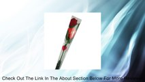 Red Rose Message Recording Recorder Roses Novelty Rose Talking Flowers; Gift for Valentine's Day and Mother Day Review