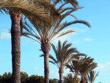 Petites annonces immobilières achat de maisons et appartements vente immobilière en Espagne Costa Blanca