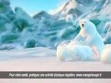 """Coca-Cola - soda, """"Polar Bears (Ours Polaires)"""" - janvier 2013"""