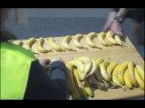"""Banane de Guadeloupe et Martinique (UGPBAN, Union des groupements de producteurs Banane) - banane - septembre 2009 - """"Marathon"""""""