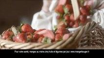 """La Laitière (Nestlé Glaces) - glaces La Laitière, """"Corbeille de Fruits, Le pique-nique"""" - mai 2011 - sorbet fraise rhubarbe"""