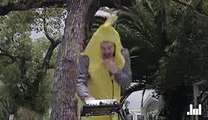 Flula Borg   A Song About Bananas   NMR Exclusive