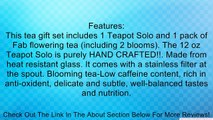 Tea Beyond Flowering Tea Solo Giftset GFS2019 Tea for One Teapot Solo and 1 Pack of Flowering Tea Review