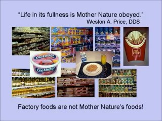 Nourishing Traditional Diets by Sallon Fallon Part 2 of 2