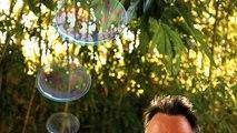 "Ubisoft - jeu vidéo Rayman Origins, ""Michel Ancel fait des bulles"" - octobre 2011"