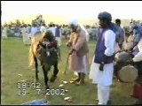 Sultan ul Faqr Hazrat Sakhi Sultan Muhammad Asghar Ali Sahib (R.A) (M H Sultania Awan Horse Club of Hazrat Sakhi Sultan Bahoo R.A)