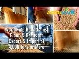 Wholesale Bulk USA Feed Wheat Broker, USA Feed Wheat Export, Where to Buy Bulk USA Feed Wheat, USA Feed Wheat in Bulk, Buy, Feed Wheat Grade 1, Feed Wheat Grade 2, Feed Wheat Grade 3