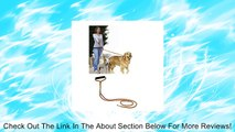 Pet Parade No-Tangle Dual Dog Leash, Double Dog Leash Coupler for 2 Dogs, for Big Dogs Review