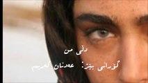 My Heart..Kamkars.. Adnan Karim.. Kurdish Song with Persian Subtitle