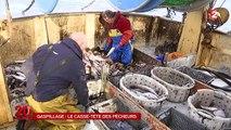 Pêche : les rejets de certains poissons sont désormais interdits