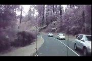 Une tempête en Australie fait tomber des arbres sur la route