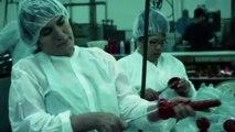 Travailler dans une usine qui fabrique des godes