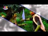 ढोड़ी में रंग डाल दिही का   Dhodi Mein Rang Dal Dihi Ka   Rang Daal Dihalas   Renu Chaudhary