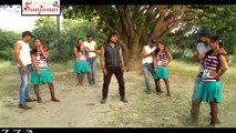 HD अपनों ने लुटा है घायल दीवाना है    2014 New Hot Bhojpuri Song    Chhotu Chhaliya