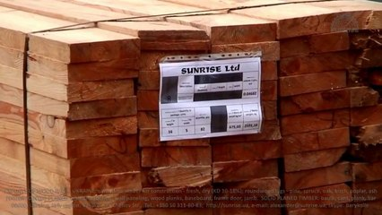 Export antiseptic pine wood/sawn timber from Ukraine to India - Bombay, Mumbai, Kandla, Mundra, Chennai, Kolkata, Madras, Kochi, Cochin.