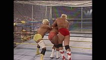 Ric Flair, Larry Zbyszko, Barry Windham, & Sid Vicious vs. Sting, Brian Pillman, Rick Steiner, & Scott Steiner (WarGames)