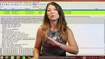 Wireshark 101: The Dynamic Host Configuration Protocol - HakTip