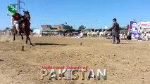 Tent Pegging - Neza Bazi, Punjab Pakistan