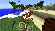 Minecraft- FLASH VS FLASH CHALLENGE - SUPERHEROES MOD BATTLES!
