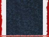 Westcott Photo Basics 5' x 8' 583 Background (Twilight)