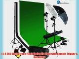 LimoStudio Photography 700 Watt Photo Studio Monolight Flash Lighting Kit - 2 Studio Flash/Strobe