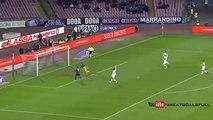 Gonzalo Higuain Goal  Napoli 1 - 0 Genoa Serie A 26-1-2015