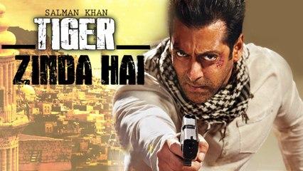 Tiger Zinda Hai 2017 Full Movie